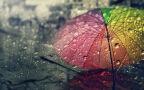 To będzie deszczowy dzień