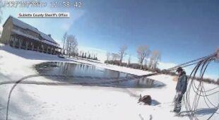Zobacz wideo z akcji ratunkowej jelenia w hrabstwie Sublette